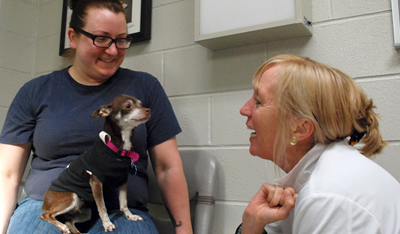 Penn Vet, Dr. Karin Sorenmo with Brownie